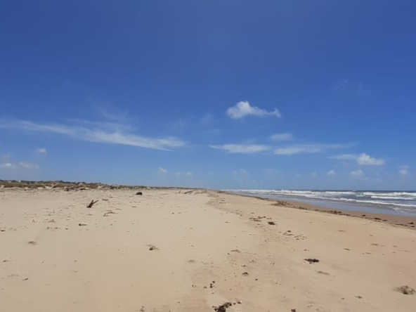Property on the beach for sale in Malindi